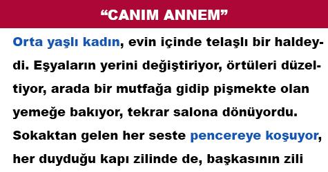 """CANIM ANNEM"""