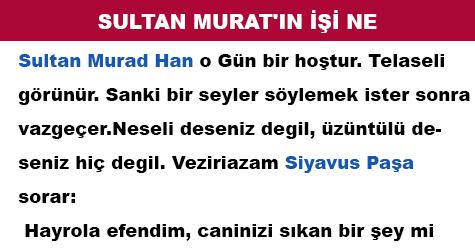 SULTAN MURAT'IN İŞİ NE