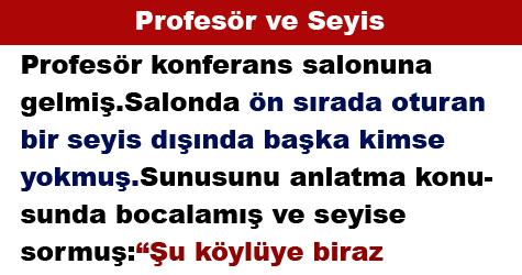 Profesör ve Seyis