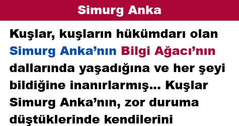 Simurg Anka