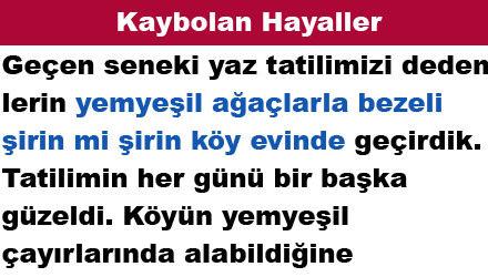 Kaybolan Hayaller
