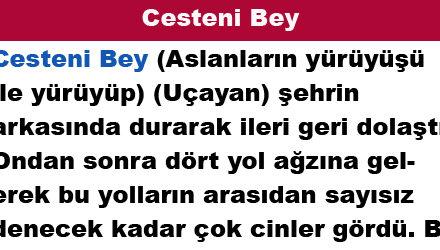 Cesteni Bey
