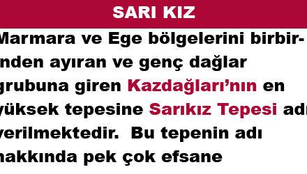 SARI KIZ