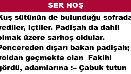 SER HOŞ