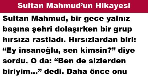Sultan Mahmud'un Hikayesi